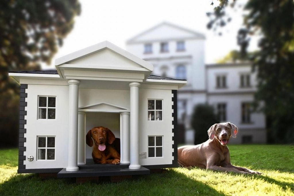 Luxury dog houses for large dogs