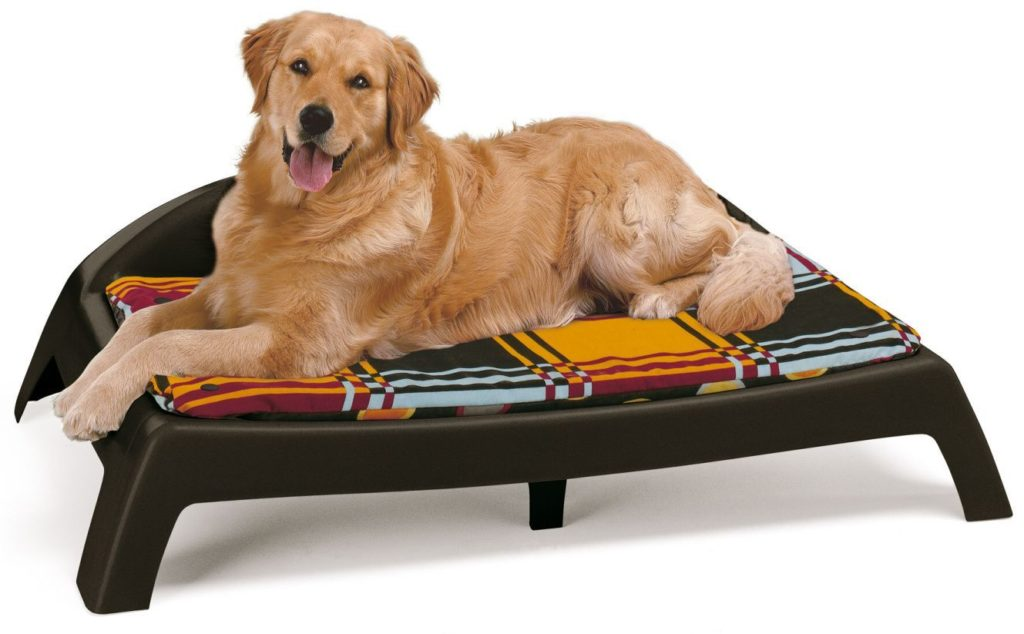 Как купить лежак для собаки