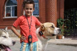 Антилай для собак купить